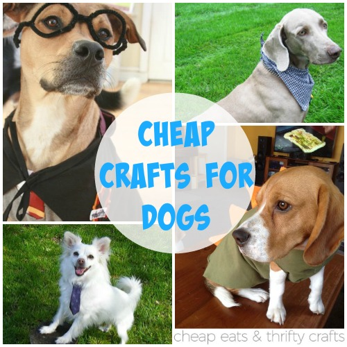 Cheap Crafts for Dogs